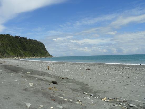Okarito Kiwi Tours: The beach