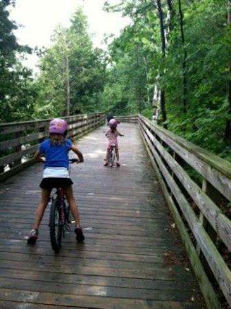 Traverse Area Recreation and Transportation Trails : TART Trail