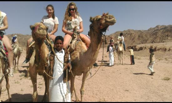 Sharm Trips - Day Tours