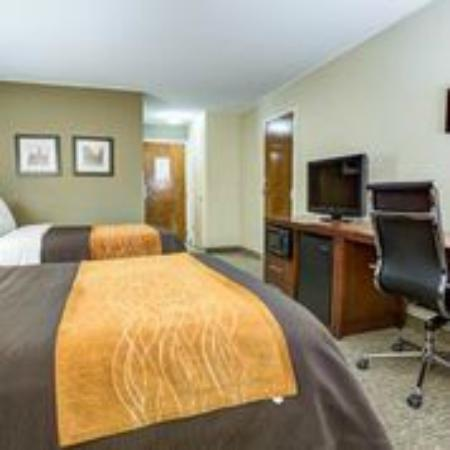 Comfort Inn Clemson University Area: Standard Two Double Beds