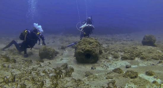 Kisamos Diving Center