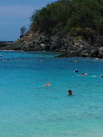 VI Snuba Excursions: Trunk Bay St John