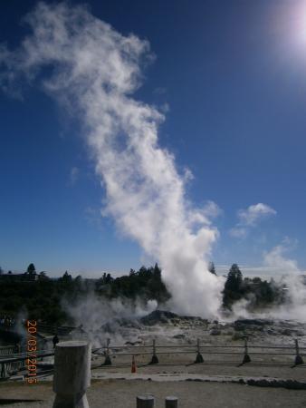 Green View Hotels: Pohutu geyser.