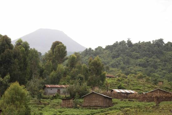 Mount Gahinga Lodge: Farm with mGahinga volcano