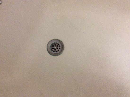 Quality Inn Opryland Area: Nasty drain tub