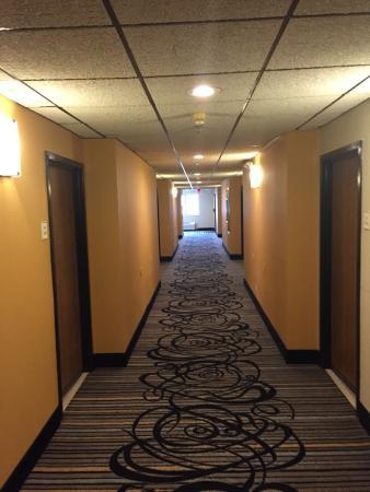 Baymont Inn & Suites Mundelein Libertyville Area : Nice and bright hallway