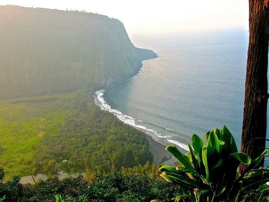 Waipio Rim: View on hike down into valley