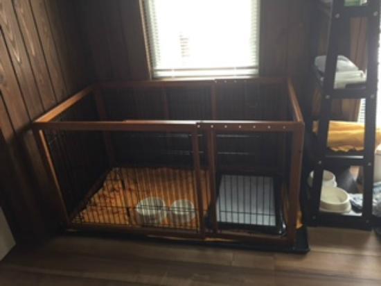 President Resort Karuizawa: 犬用ケージ
