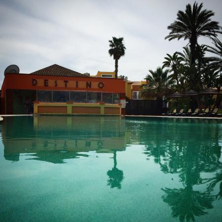 Jardim da Meia Praia: The Pool