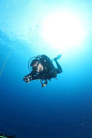 Diveness SCUBA Dive Center