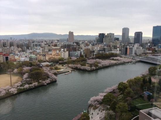 Imperial Hotel Osaka: sakura by the river