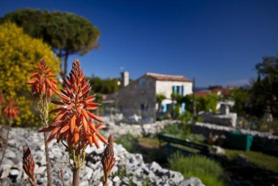 """Mali Losinj, Kroatien: """"Garden of fine scents"""""""