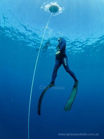 Apnea Australia: Freedive courses