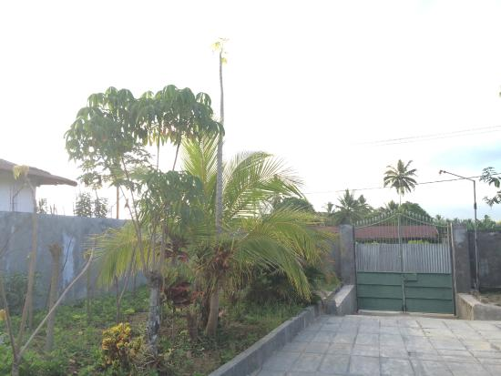 North Sulawesi, Indonesien: Grounds/outside room