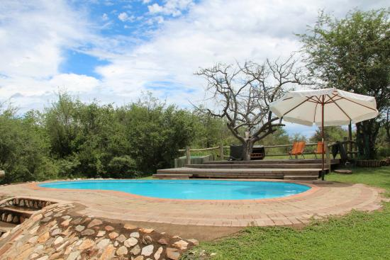 Mfubu Lodge and Gallery : Mfubu pool.