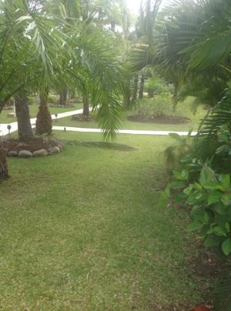 Blue Horizons Garden Resort: jardines