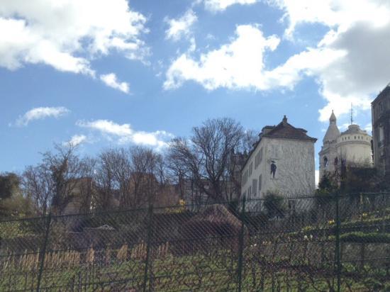 Paryż, Francja: Vineyard
