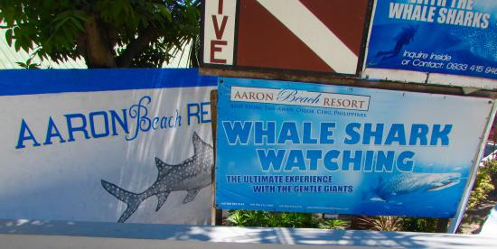 Aaron Beach Resort: Gate entrance