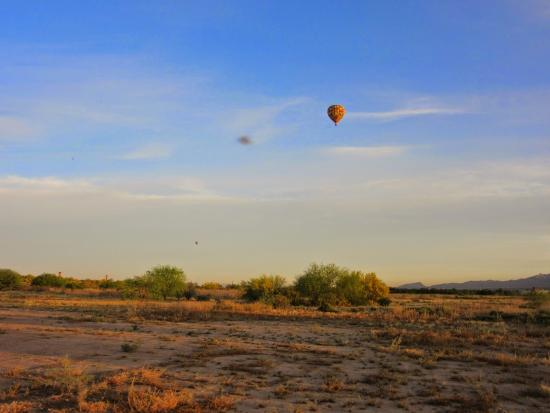 Tucson Balloon Rides : Making the dogs howl...