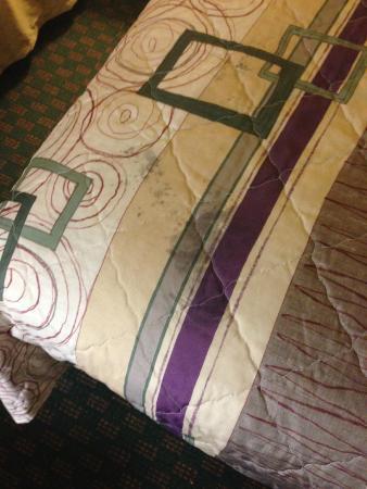 Sleep Inn near Ft. Jackson: Stains on bedspread.