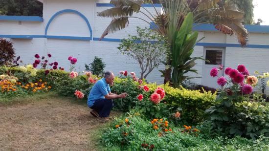 Peerless Resort, Mukutmonipur: Beautiful flowers