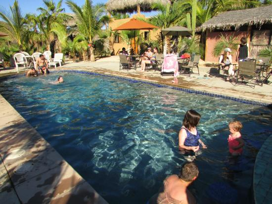 "Pescadero Surf Camp: Garden-like pool area is a great place to ""hang out""."