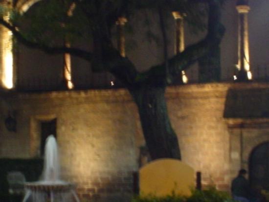 Fuentecita - Picture of Jardin de las Rosas, Morelia - TripAdvisor
