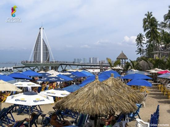 Hotel Posada Lily: Playa