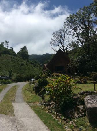Boquete Tree Trek Restaurant: Para llegar hermosas vistas