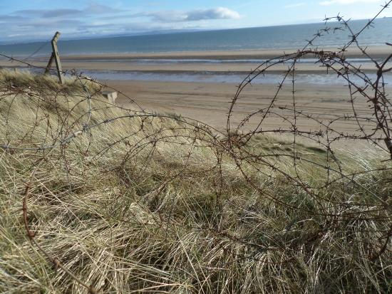 Stevenston, UK: after the dynamite.  barbed wire at post industrial ardeer beach