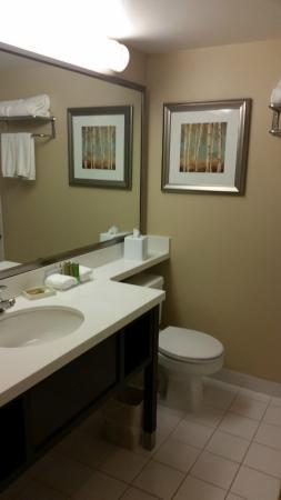 Bathroom, BEST WESTERN PLUS Winnipeg Airport Hotel     1715 Wellington Ave, Winnipeg, Manitoba