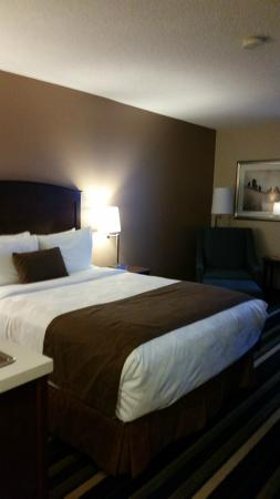 Our king size bed, BEST WESTERN PLUS Winnipeg Airport Hotel  |  1715 Wellington Ave, Winnipeg, M