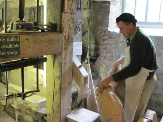 The Town Mill: Milling Flour at Lyme Regis Town Mill (04/Apr/15).