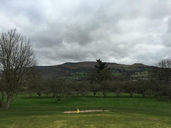 The Old Rectory Country Hotel and Golf Club: View from room 21