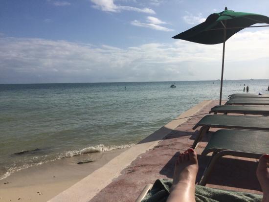 Coconut Beach Resort: Beachside