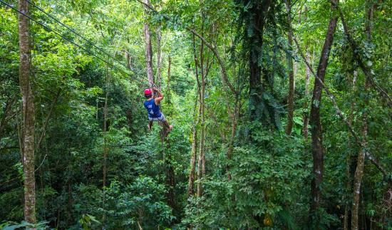 Red Frog Beach Island Resort & Spa : Zip line