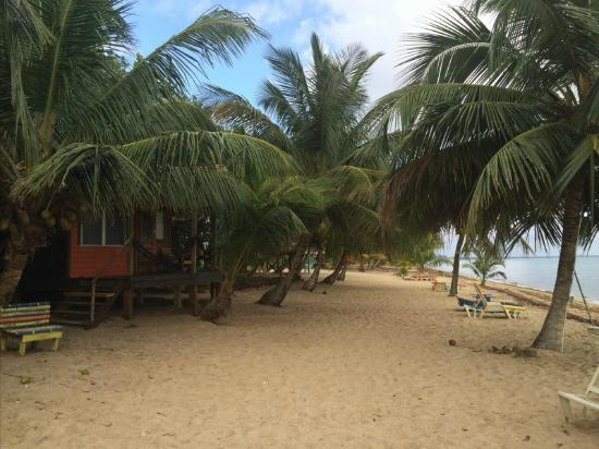 Jungle Jeanie's by the Sea: Jeanie's beach front cabanas