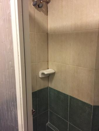 Paladin Hotel : Nasty shower with no hot or warm water