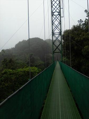 Santa Elena Skywalk : ponte 5