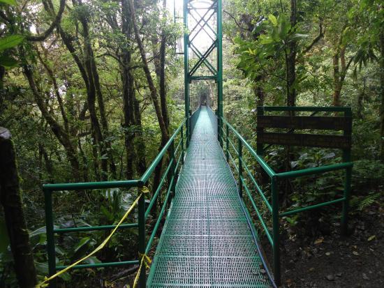 Santa Elena Skywalk : ponte 3