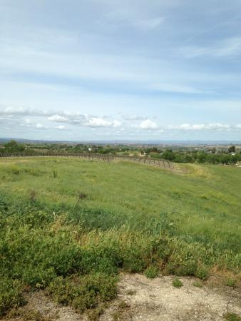 Hidden Oak Winery: view 1