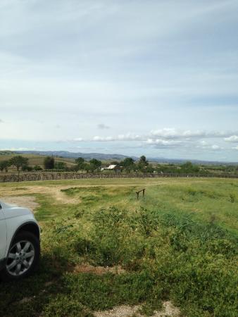 Hidden Oak Winery: view 2