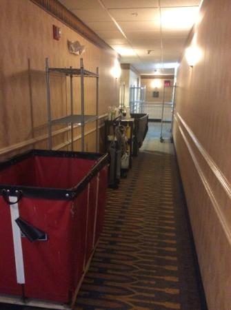 Homewood Suites by Hilton Fort Myers : Hallway to guest room