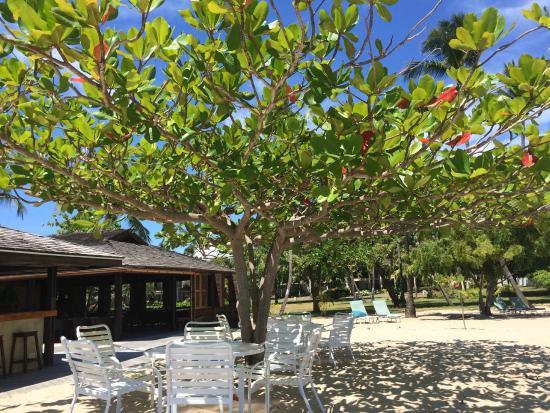 The Beach Club at Calabash : Exterior View