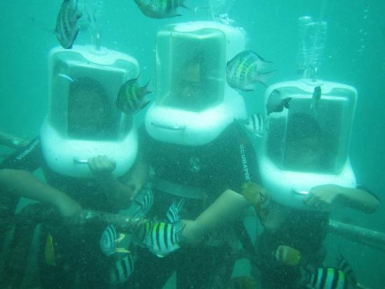 Wibisana Marine Adventures: Petualangan Bahari Wibisana