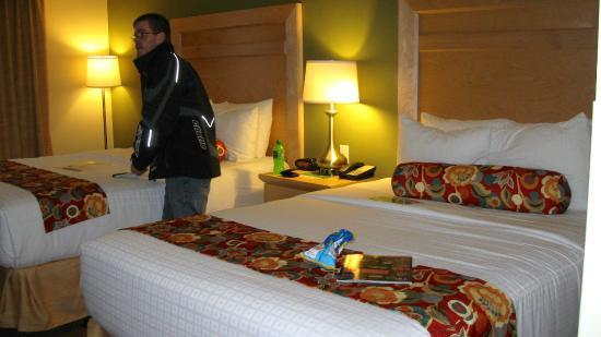 La Quinta Inn & Suites Rochester: 2 Queen Room