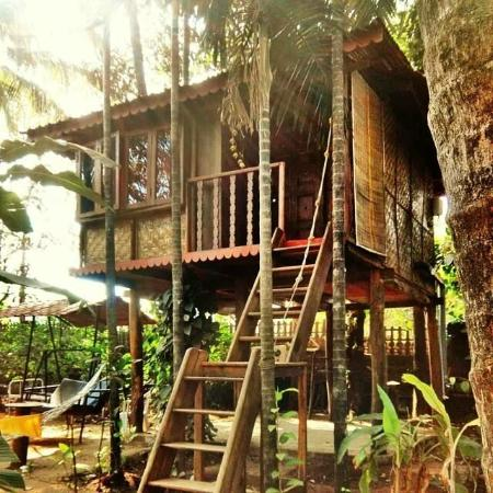 ONest Home Stay