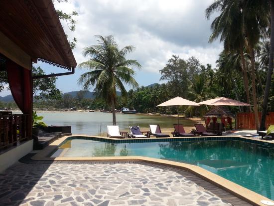 Cyana Beach Resort: Love that coconut tree