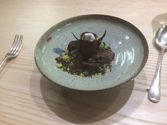 Chocolate tree trunk dessert