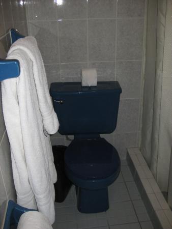 Hotel Mision Catavina: blaue Toilette
